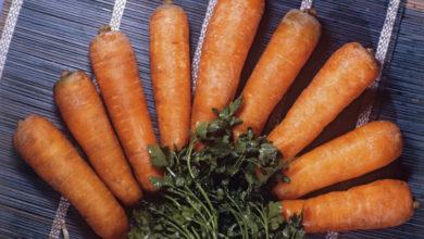 Photo of Что произойдет с организмом, если регулярно есть морковь