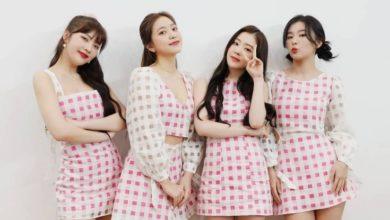 Photo of Огуречная диета и куриные грудки: как звёзды K-Pop поддерживают форму