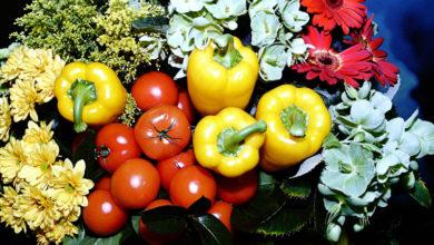 Photo of В каких продуктах витамина C больше, чем в лимоне? Отвечает диетолог