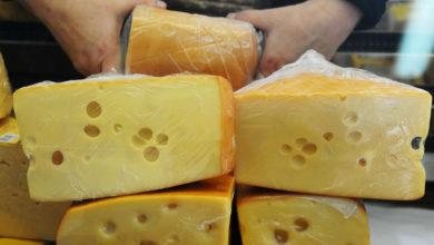 Photo of Что будет, если есть сыр каждый день? Отвечает врач-диетолог