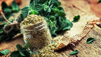 Photo of Полезные продукты для похудения и иммунитета: список от диетолога