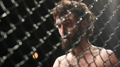Photo of Магомедшарипов обратился к президенту UFC с вопросом о следующем бое